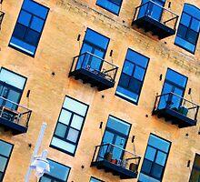 windows by Lynne Prestebak