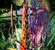 3649 Aloe by AnkhaDesh