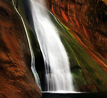 The Lover's Paradise by American Southwest Photography