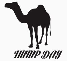Hump Day Camel by Alan Craker