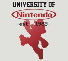 University of Nintendo by Dominotrigger