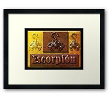 ©DA Escorpión IAF Framed Print