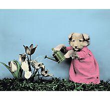Cute Dog Watering Garden Photographic Print