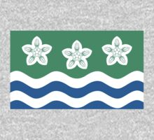 Cumberland County Flag by cadellin