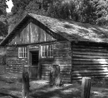 Log Cabin BW by DavidsArt