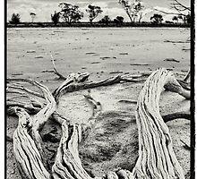 Yenyenning Lakes by Paul Amyes