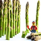 Asparagus Harvest by William Rottenburg