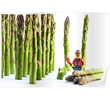 Asparagus Harvest Poster