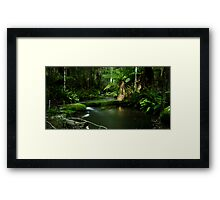 On the way to Lower Kalimna Falls Framed Print