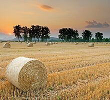 Hay bales at Sunset 3 by LexiTheMonster