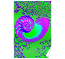 Color growth, nautilus shell Poster