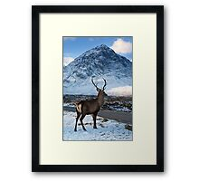 Magestic Wild Stag with Mountain Backdrop Framed Print