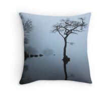 Sunken Tree in Fog Throw Pillow