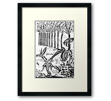 087 Framed Print
