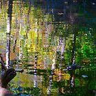 Floating treasures by MarianBendeth
