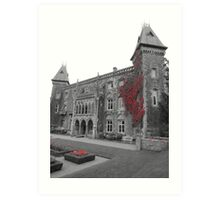 Newton House in the Red (South Wales) Art Print