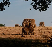 Stack of Bales / Gorilla Sandwich by Audid00dy