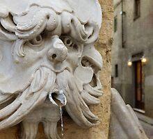 The fountain by rentedochan