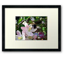 bee-utiful spring Framed Print