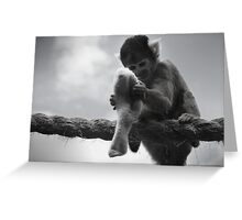 London Monkey Sock Greeting Card