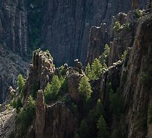 Crag - Black Canyon of the Gunnison National Park, Colorado by Jason Heritage