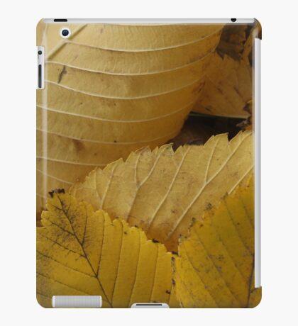 Golden Elm Leaves iPad Case/Skin