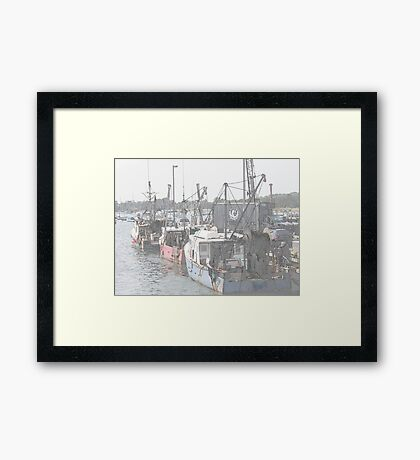 Sketching the fish Framed Print
