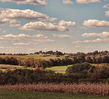 Great Fall Scenery 2 by vigor