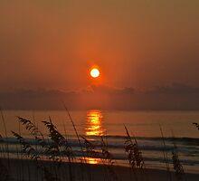 Sunrise on the Beach by Nancy Rohrig