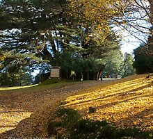 Autumn at Dorje Ling Retreat Centre by tashicholing