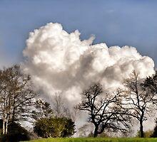 Storm on the Horizon  by Karen Peron