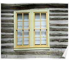 Moth on a Window Pane Poster