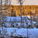 """""""The Old Winter Cottage By The Lake"""" by Diana Graves Photography"""