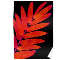"""Day 259   365 Day Creative Project  """"Red Harmony"""" Poster"""