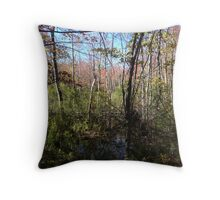 Fall On Peaks Island Throw Pillow