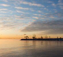 Early Morning Zen - Meditating on the Waterfront at Sunrise by Georgia Mizuleva