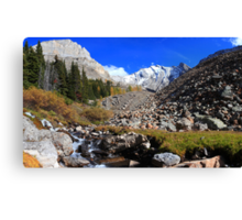 Arethusa creek and peaks II Canvas Print