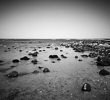 The lonely sea with nothing to see. by Andrew Holford