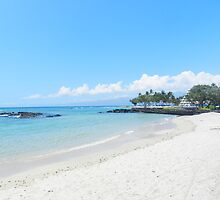 Mauna Lani Beach, Big Island Hawaii by Joni  Rae