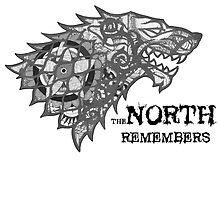 The North Remembers by Beau Preston
