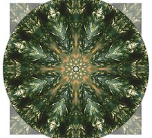 Moss Agate Mandala by haymelter