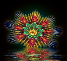 Star Flower Reflections by Pam Amos