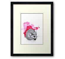 Red Hamster Framed Print