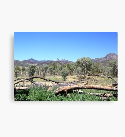 Warrumbungles from Belougery flats Canvas Print