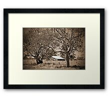 on the road to Coonamble Framed Print