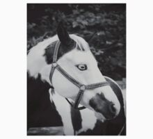 Black and White Horse Kids Clothes