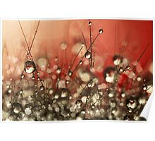 Riot Red Cactus Sparkles Poster