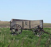 Abandoned Grain Wagon in a Field by rhamm