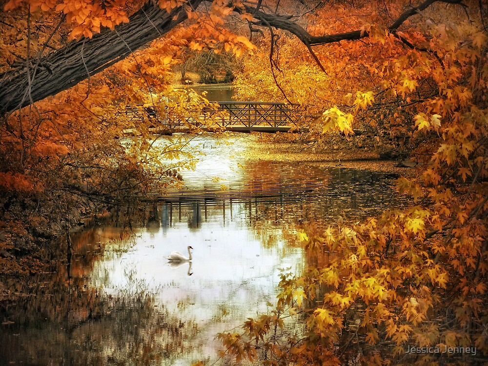 Footbridge Reflections by Jessica Jenney
