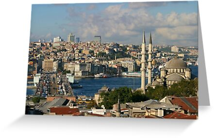 Galata Bridge and Yeni Mosque in Istanbul by Jens Helmstedt